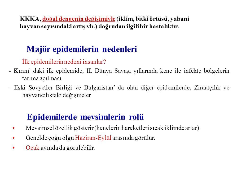 İlk epidemilerin nedeni insanlar.- Kırım' daki ilk epidemide, II.