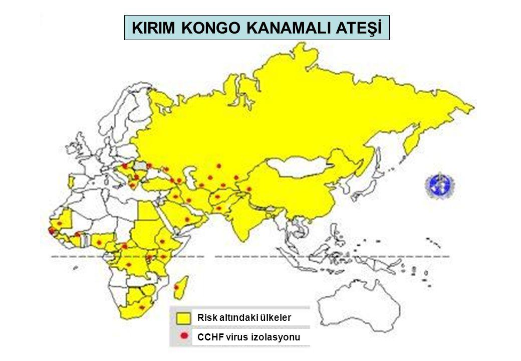 Risk altındaki ülkeler CCHF virus izolasyonu KIRIM KONGO KANAMALI ATEŞİ