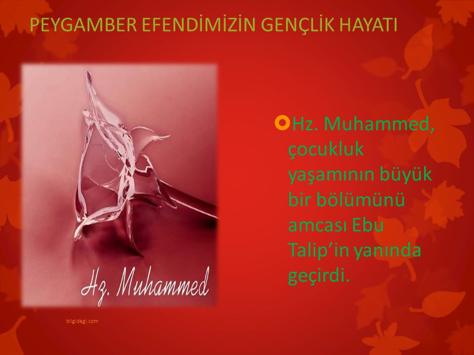 PEYGAMBER EFENDİMİZİN GENÇLİK HAYATI  Hz. Muhammed, çocukluk yaşamının büyük bir bölümünü amcası Ebu Talip'in yanında geçirdi. bilgidagi.com