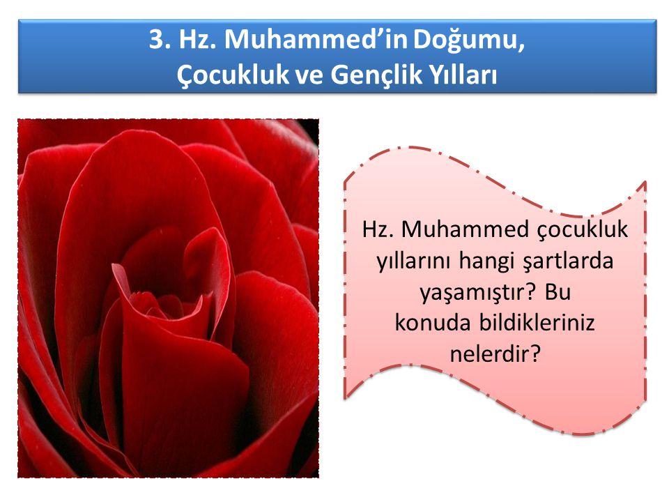 3. Hz. Muhammed'in Doğumu, Çocukluk ve Gençlik Yılları 3. Hz. Muhammed'in Doğumu, Çocukluk ve Gençlik Yılları Hz. Muhammed çocukluk yıllarını hangi şa