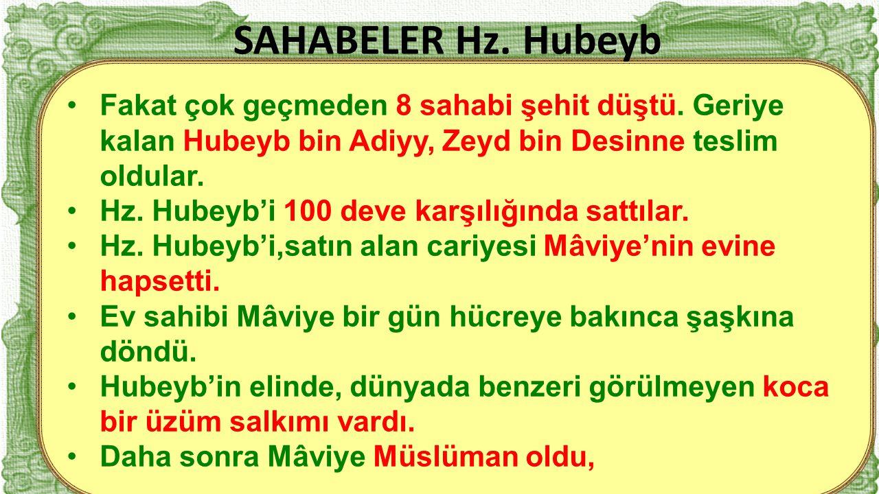 16 Fakat çok geçmeden 8 sahabi şehit düştü. Geriye kalan Hubeyb bin Adiyy, Zeyd bin Desinne teslim oldular. Hz. Hubeyb'i 100 deve karşılığında sattıla