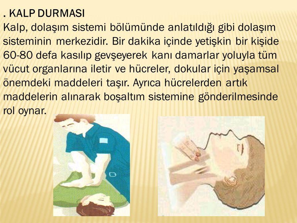. KALP DURMASI Kalp, dolaşım sistemi bölümünde anlatıldığı gibi dolaşım sisteminin merkezidir. Bir dakika içinde yetişkin bir kişide 60-80 defa kasılı