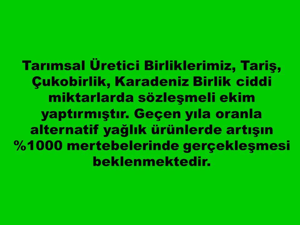 Tarımsal Üretici Birliklerimiz, Tariş, Çukobirlik, Karadeniz Birlik ciddi miktarlarda sözleşmeli ekim yaptırmıştır.