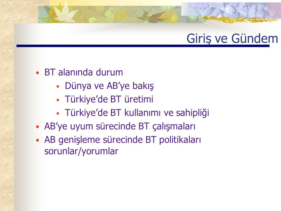 Giriş ve Gündem BT alanında durum Dünya ve AB'ye bakış Türkiye'de BT üretimi Türkiye'de BT kullanımı ve sahipliği AB'ye uyum sürecinde BT çalışmaları AB genişleme sürecinde BT politikaları sorunlar/yorumlar