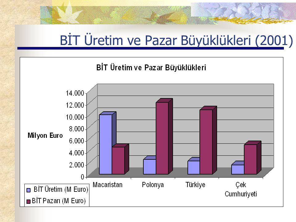 BİT Üretim ve Pazar Büyüklükleri (2001)