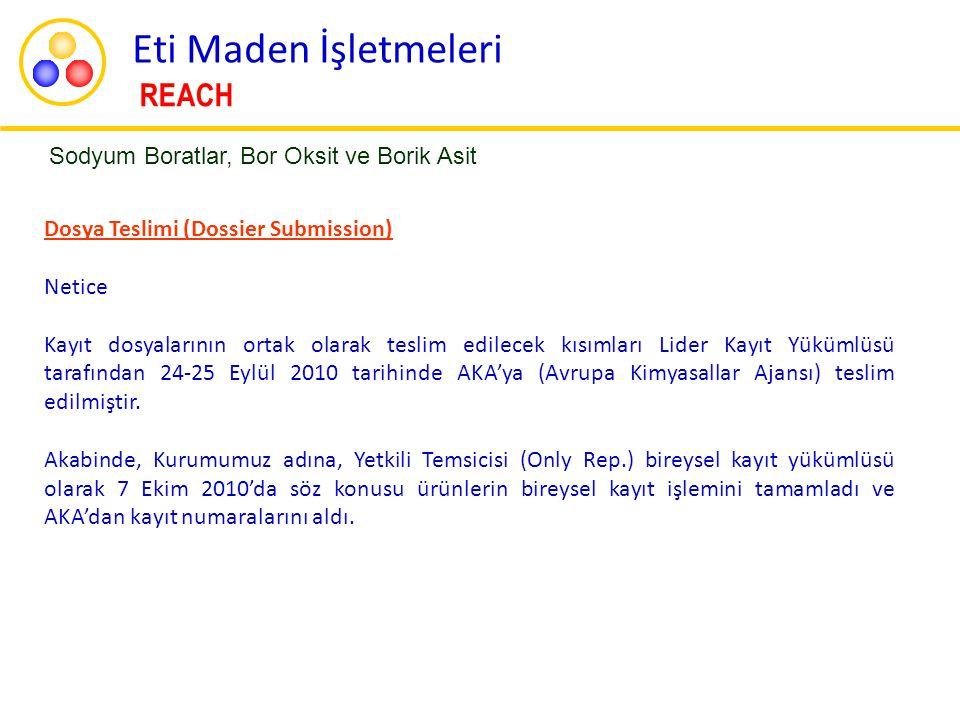 Dosya Teslimi (Dossier Submission) Netice Kayıt dosyalarının ortak olarak teslim edilecek kısımları Lider Kayıt Yükümlüsü tarafından 24-25 Eylül 2010