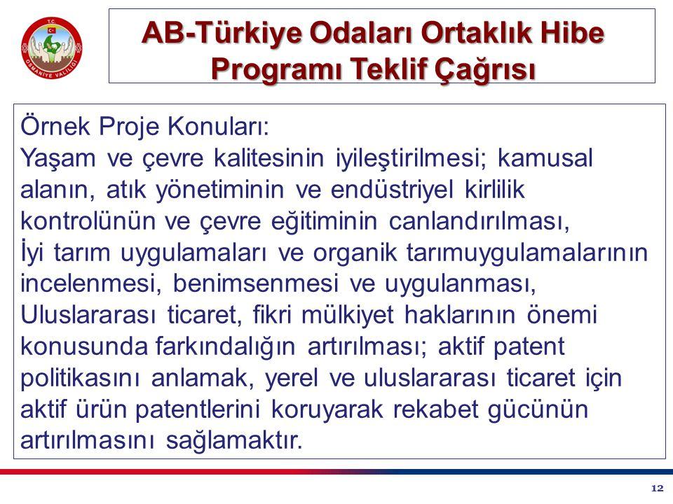 12 AB-Türkiye Odaları Ortaklık Hibe Programı Teklif Çağrısı Örnek Proje Konuları: Yaşam ve çevre kalitesinin iyileştirilmesi; kamusal alanın, atık yönetiminin ve endüstriyel kirlilik kontrolünün ve çevre eğitiminin canlandırılması, İyi tarım uygulamaları ve organik tarımuygulamalarının incelenmesi, benimsenmesi ve uygulanması, Uluslararası ticaret, fikri mülkiyet haklarının önemi konusunda farkındalığın artırılması; aktif patent politikasını anlamak, yerel ve uluslararası ticaret için aktif ürün patentlerini koruyarak rekabet gücünün artırılmasını sağlamaktır.