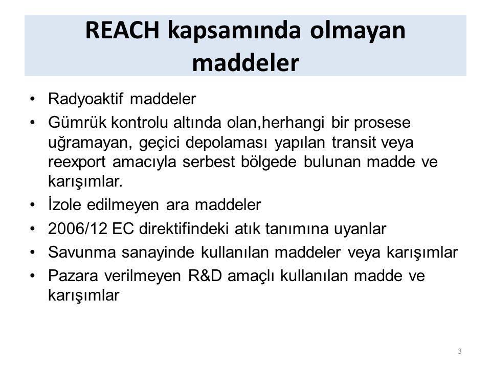 REACH kapsamında olmayan maddeler Radyoaktif maddeler Gümrük kontrolu altında olan,herhangi bir prosese uğramayan, geçici depolaması yapılan transit veya reexport amacıyla serbest bölgede bulunan madde ve karışımlar.