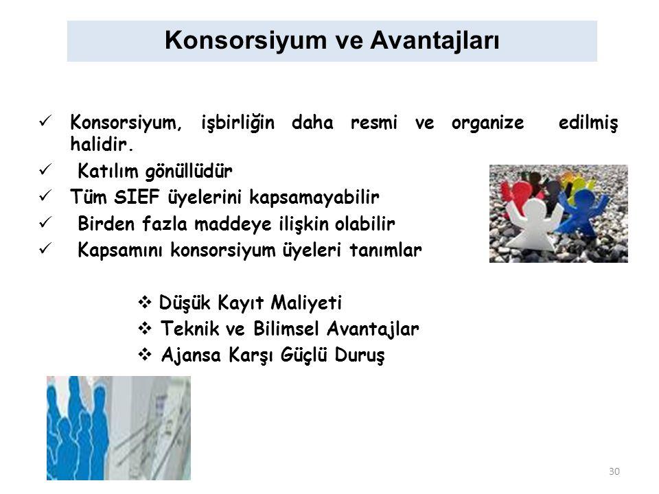 Konsorsiyum ve Avantajları Konsorsiyum, işbirliğin daha resmi ve organize edilmiş halidir.