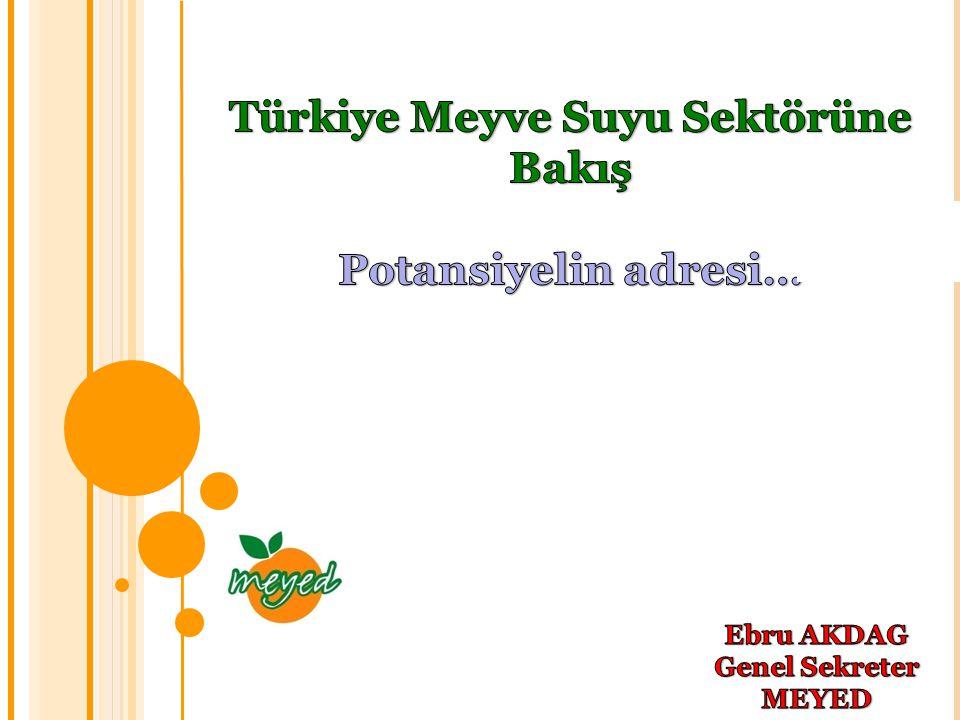 Gündem  Meyve Suyu Endüstrisi Derneği (MEYED) I.Pazar performansı değerlendirmesi II.