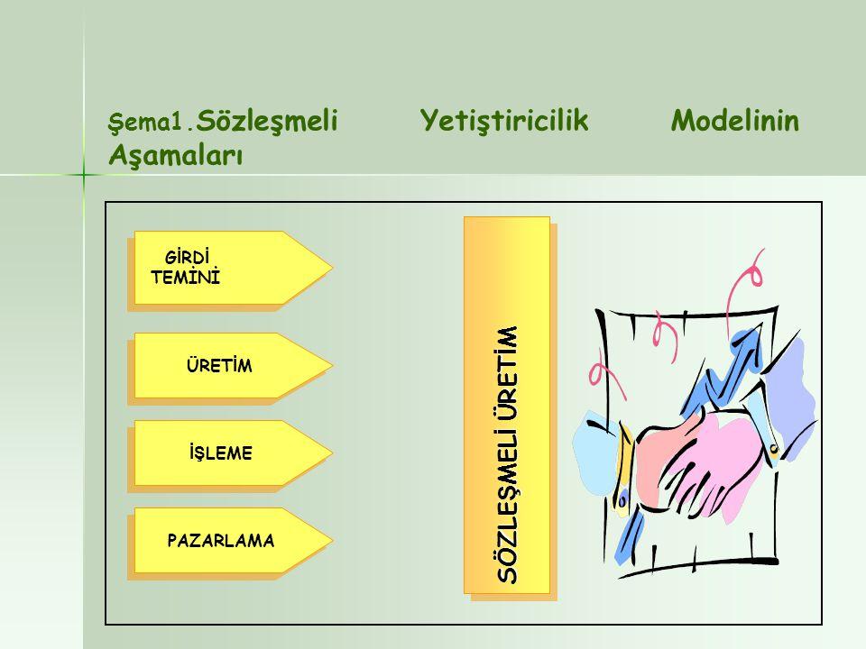 G İ RD İ TEMİNİ G İ RD İ TEMİNİ ÜRET İ M İŞ LEME PAZARLAMA SÖZLE Ş MEL İ ÜRET İ M Şema1. Sözleşmeli Yetiştiricilik Modelinin Aşamaları