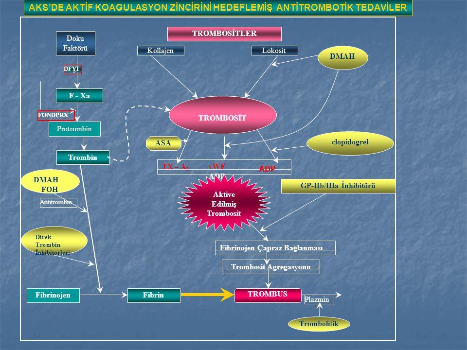 TROMBOSİTLER KollajenLokosit DMAH TROMBOSİT clopidogrel Doku Faktörü F - Xa Protrombin Trombin TX – A 2 vWF ADP ASA Aktive Edilmiş Trombosit GP-IIb/IIIa İnhibitörü Fibrinojen Çapraz Bağlanması Trombosit Agregasyonu TROMBUS Plazmin Trombolitik FibrinFibrinojen DMAH FOH Direk Trombin İnhibitorleri FONDPRX DFYI Antitrombin AKS'DE AKTİF KOAGULASYON ZİNCİRİNİ HEDEFLEMİŞ ANTİTROMBOTİK TEDAVİLER ADP