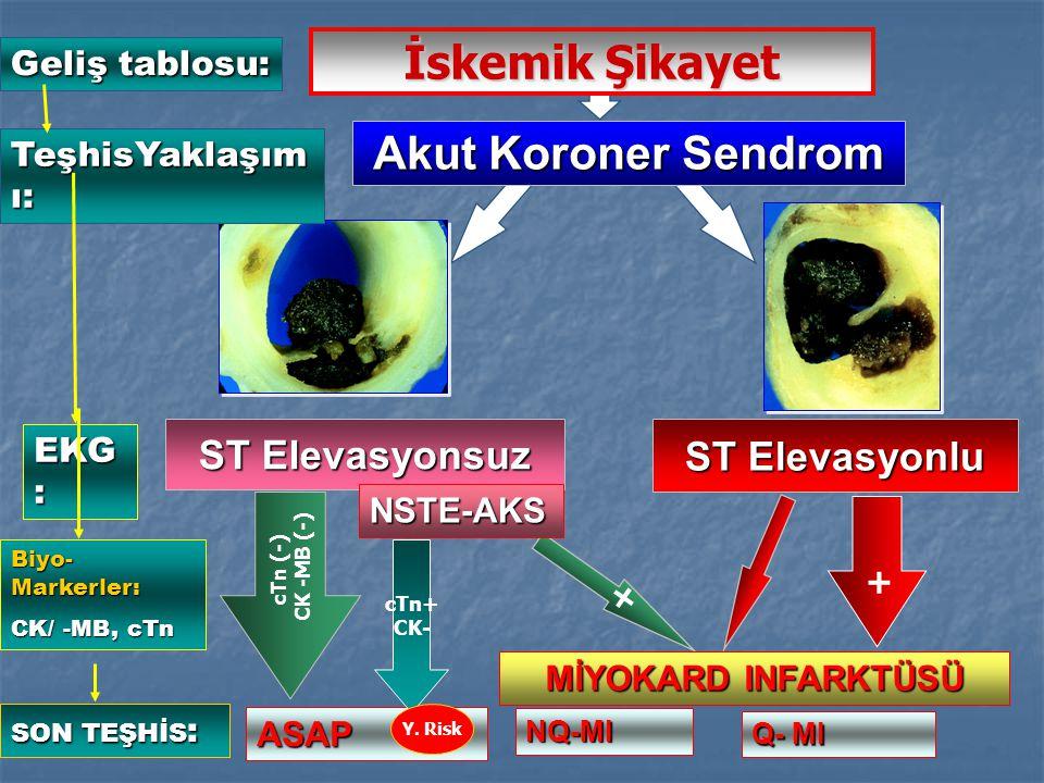 + cTn (-) CK -MB (-) + ST Elevasyonsuz ST Elevasyonlu Akut Koroner Sendrom ASAP NQ-MI Q- MI NSTE-AKS MİYOKARD INFARKTÜSÜ İskemik Şikayet Geliş tablosu: TeşhisYaklaşım ı: EKG:EKG:EKG:EKG: Biyo- Markerler: CK/ -MB, cTn SON TEŞHİS : cTn+ CK- Y.
