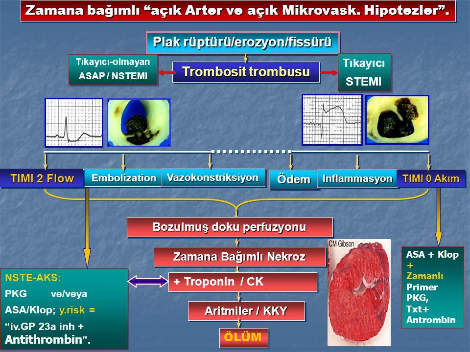 Zamana bağımlı açık Arter ve açık Mikrovask. Hipotezler .
