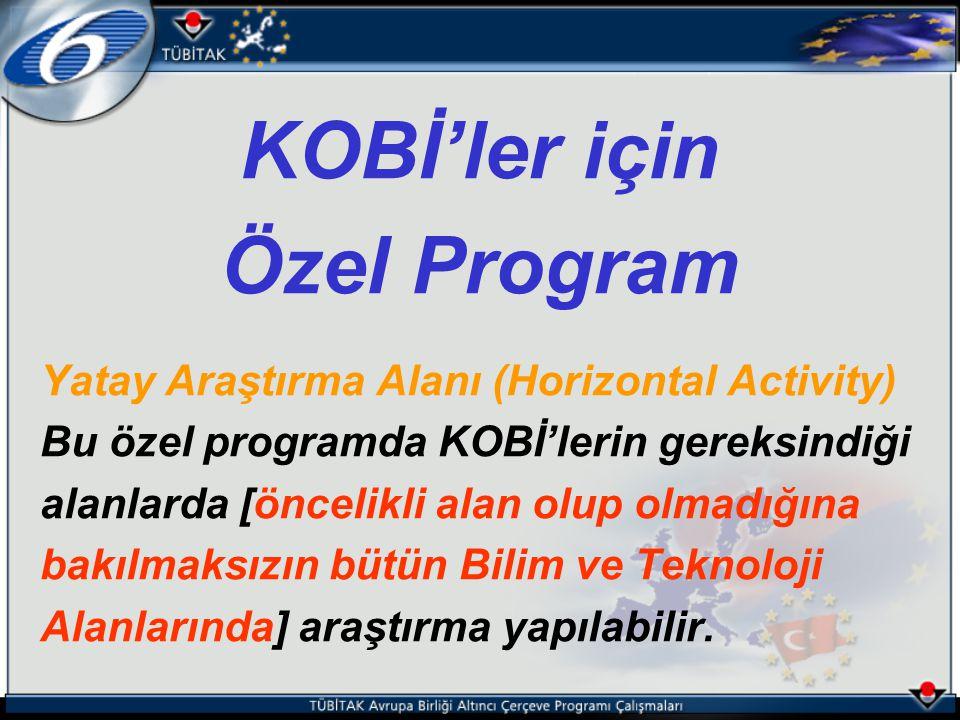 KOBİ'ler için Özel Program Yatay Araştırma Alanı (Horizontal Activity) Bu özel programda KOBİ'lerin gereksindiği alanlarda [öncelikli alan olup olmadı