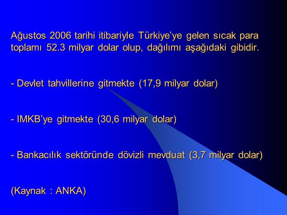 Ağustos 2006 tarihi itibariyle Türkiye'ye gelen sıcak para toplamı 52.3 milyar dolar olup, dağılımı aşağıdaki gibidir.