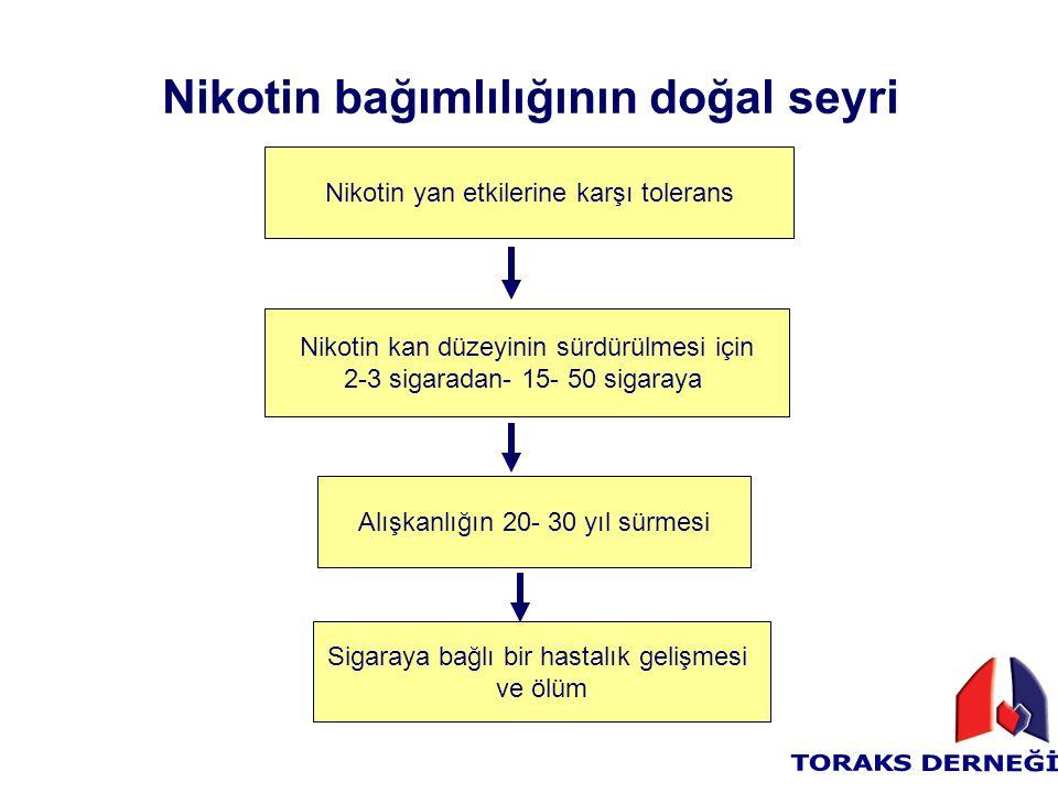 Nikotin bağımlılığının doğal seyri Nikotin yan etkilerine karşı tolerans Nikotin kan düzeyinin sürdürülmesi için 2-3 sigaradan- 15- 50 sigaraya Alışka