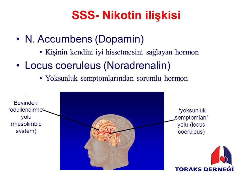 SSS- Nikotin ilişkisi N. Accumbens (Dopamin) Kişinin kendini iyi hissetmesini sağlayan hormon Locus coeruleus (Noradrenalin) Yoksunluk semptomlarından