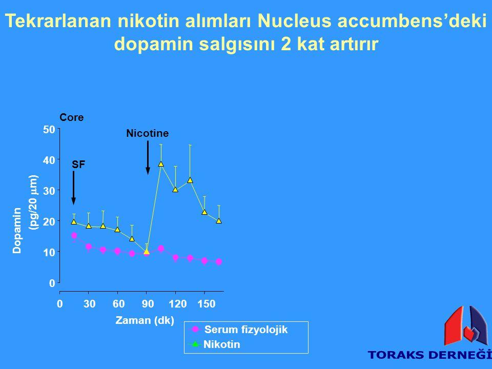 Tekrarlanan nikotin alımları Nucleus accumbens'deki dopamin salgısını 2 kat artırır Core Zaman (dk) 0306090120150 Dopamin (pg/20  m) 0 10 20 30 40 50