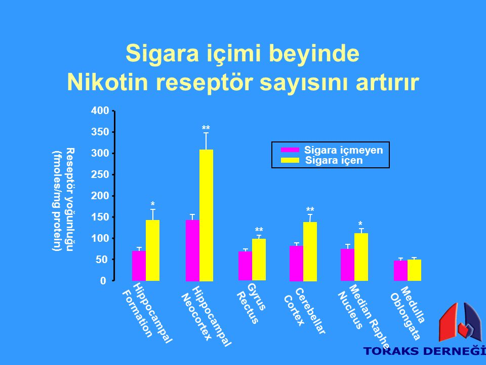 Sigara içimi beyinde Nikotin reseptör sayısını artırır Reseptör yoğunluğu (fmoles/mg protein) 0 50 100 150 200 250 300 350 400 Medulla Oblongata Media