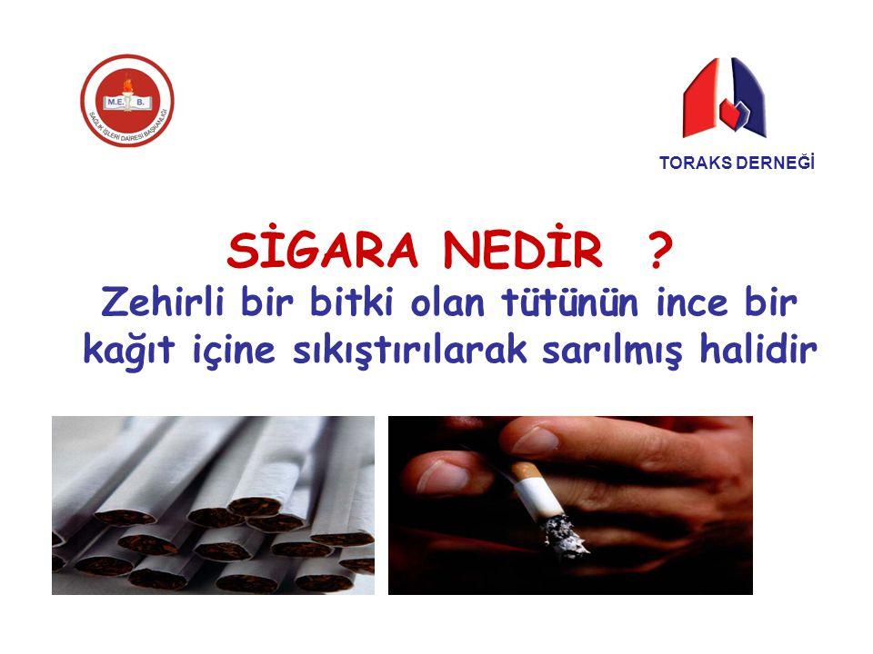 İçilen her sigara, insan yaşamını 5 dakika kısaltır Erken yaşda sigaraya başlayanların ömrü ortalama 20-25 yıl azalır TORAKS DERNEĞİ
