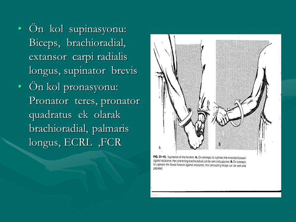 Ön kol supinasyonu: Biceps, brachioradial, extansor carpi radialis longus, supinator brevisÖn kol supinasyonu: Biceps, brachioradial, extansor carpi radialis longus, supinator brevis Ön kol pronasyonu: Pronator teres, pronator quadratus ek olarak brachioradial, palmaris longus, ECRL,FCRÖn kol pronasyonu: Pronator teres, pronator quadratus ek olarak brachioradial, palmaris longus, ECRL,FCR