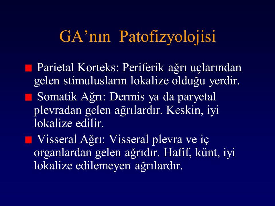 GA'nın Patofizyolojisi Parietal Korteks: Periferik ağrı uçlarından gelen stimulusların lokalize olduğu yerdir. Somatik Ağrı: Dermis ya da paryetal ple