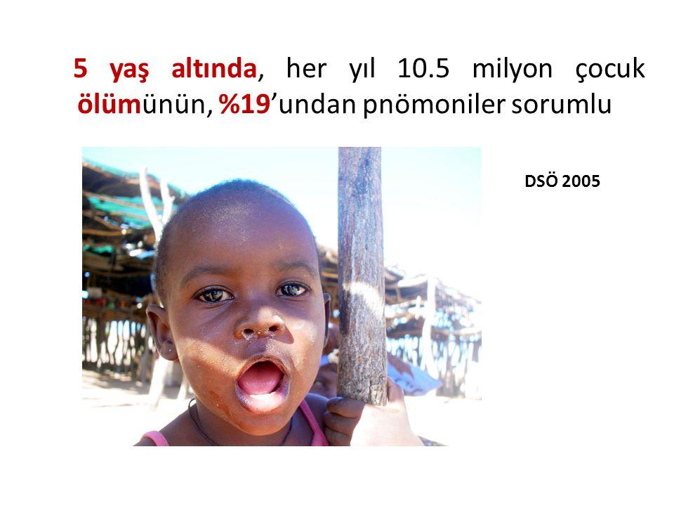 Dünya genelinde yeni pnömoni tanısı alan tüm olguların %95'inden fazlası gelişmekte olan ülkelerde görülmektedir DSÖ 2005 Giriş – Sorunun Boyutları