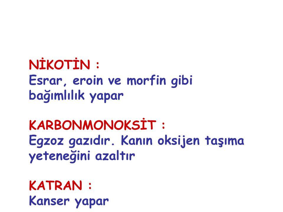 NİKOTİN : Esrar, eroin ve morfin gibi bağımlılık yapar KARBONMONOKSİT : Egzoz gazıdır. Kanın oksijen taşıma yeteneğini azaltır KATRAN : Kanser yapar