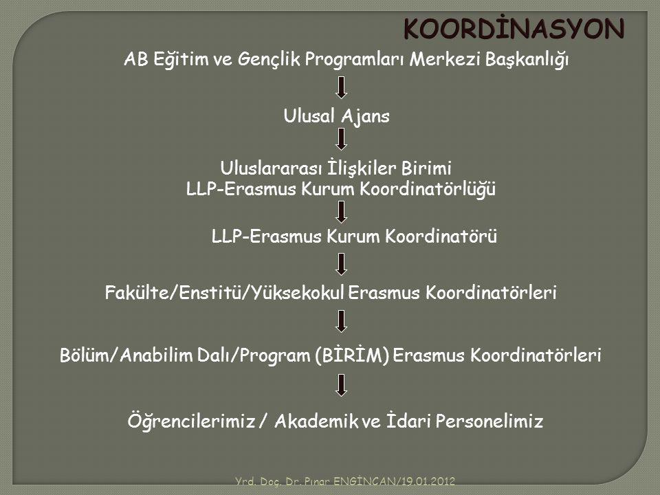 KOORDİNASYON AB Eğitim ve Gençlik Programları Merkezi Başkanlığı Ulusal Ajans Uluslararası İlişkiler Birimi Fakülte/Enstitü/Yüksekokul Erasmus Koordin