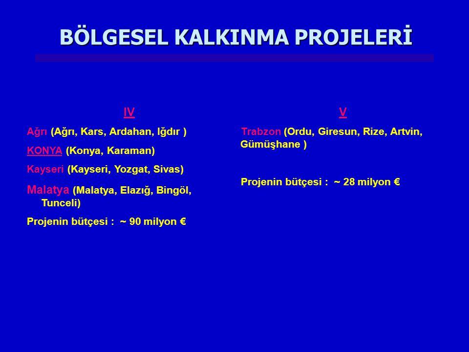 BÖLGESEL KALKINMA PROJELERİ IV Ağrı (Ağrı, Kars, Ardahan, Iğdır ) KONYA (Konya, Karaman) Kayseri (Kayseri, Yozgat, Sivas) Malatya (Malatya, Elazığ, Bi