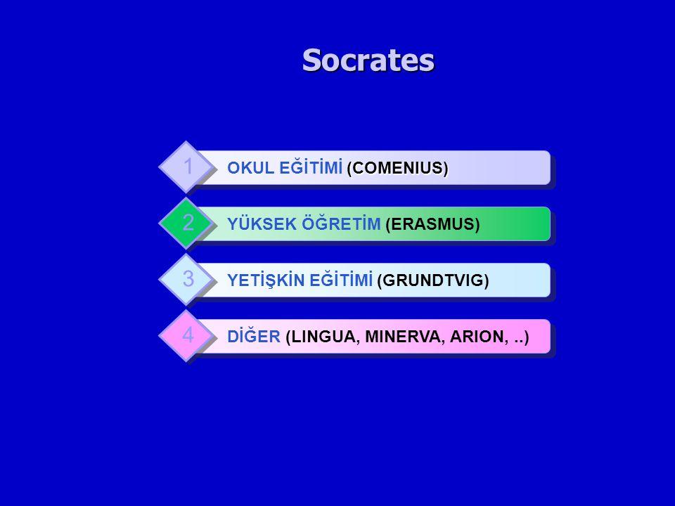 Socrates (COMENIUS) OKUL EĞİTİMİ (COMENIUS) 1 YÜKSEK ÖĞRETİM (ERASMUS) 2 YETİŞKİN EĞİTİMİ (GRUNDTVIG) 3 DİĞER (LINGUA, MINERVA, ARION,..) 4