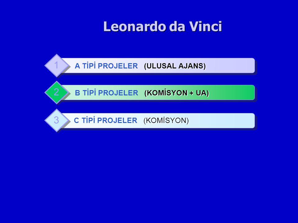 Leonardo da Vinci (ULUSAL AJANS) A TİPİ PROJELER (ULUSAL AJANS) 1 (KOMİSYON + UA) B TİPİ PROJELER (KOMİSYON + UA) 2 (KOMİSYON) C TİPİ PROJELER (KOMİSY