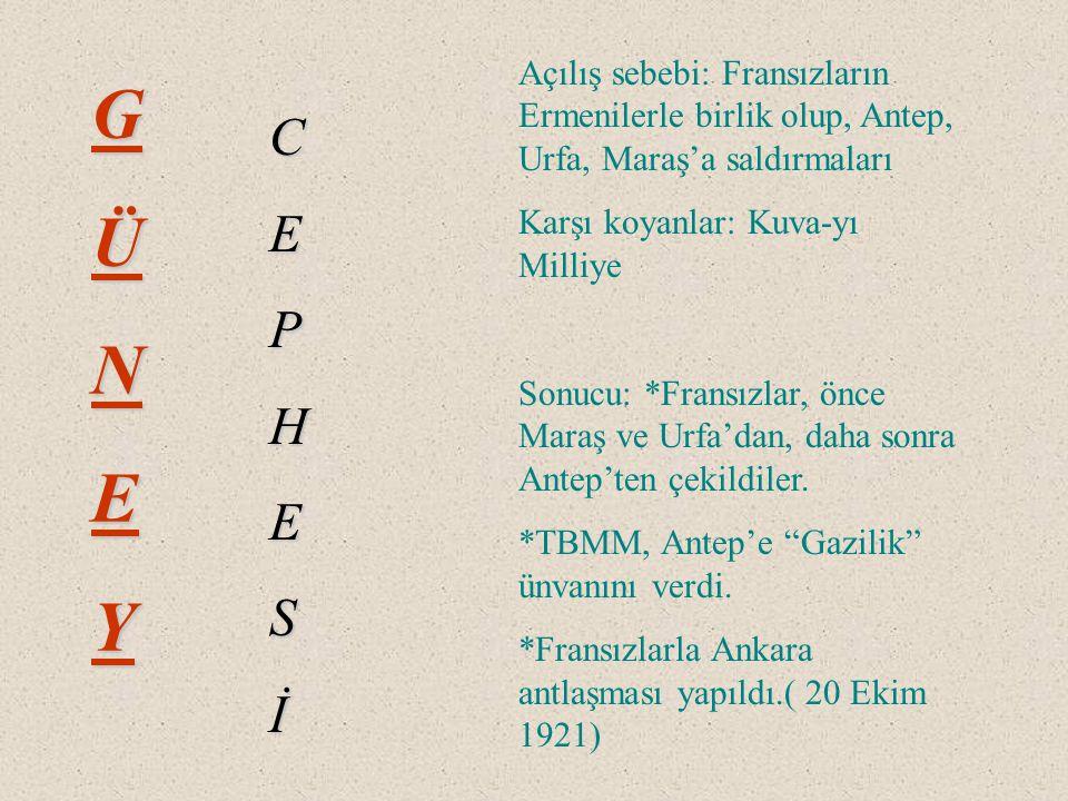 Sebebi : Yunanlılar Afyon, Eskişehir ve Kütahya'yı alarak asıl hedefleri olan Ankara'ya ulaşmak istiyorlardı ve Sevr Antlaşmasını TBMM'ne kabul ettirtmek Sonucu : Türk Ordusunun zaferiyle sonuçlandı.
