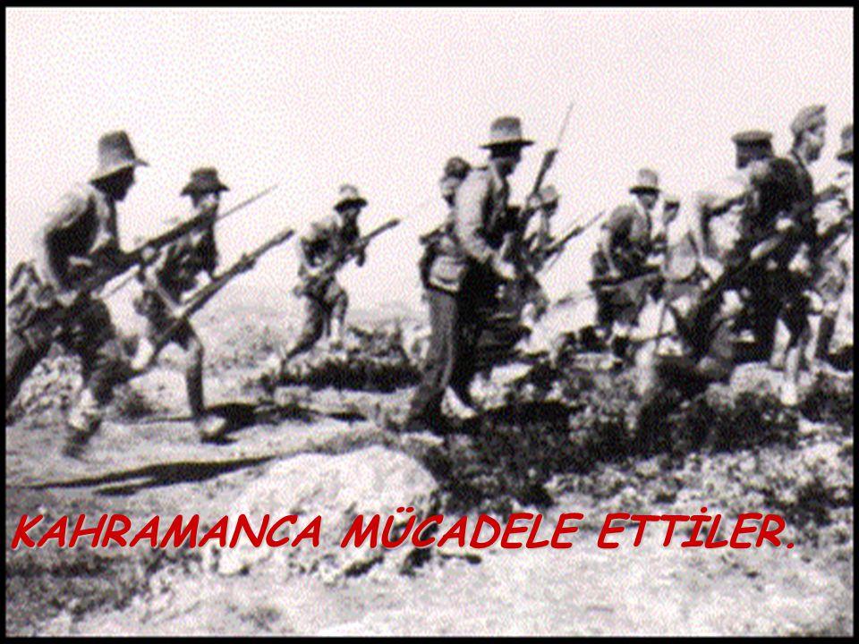 GÜNEY CEPHESİ Açılış sebebi: Fransızların Ermenilerle birlik olup, Antep, Urfa, Maraş'a saldırmaları Karşı koyanlar: Kuva-yı Milliye Sonucu: *Fransızl