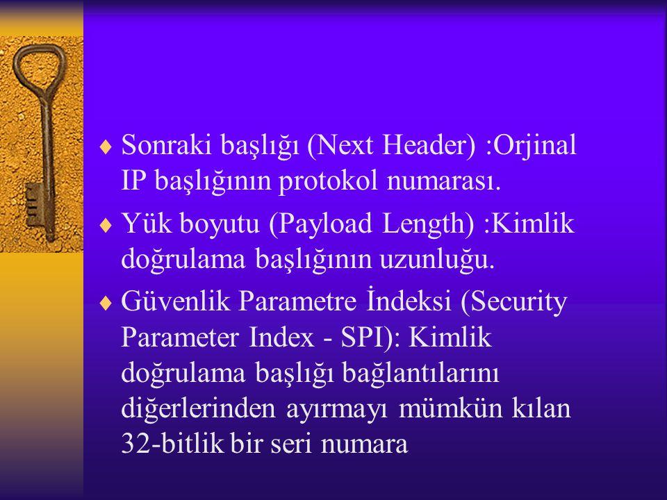  Sonraki başlığı (Next Header) :Orjinal IP başlığının protokol numarası.