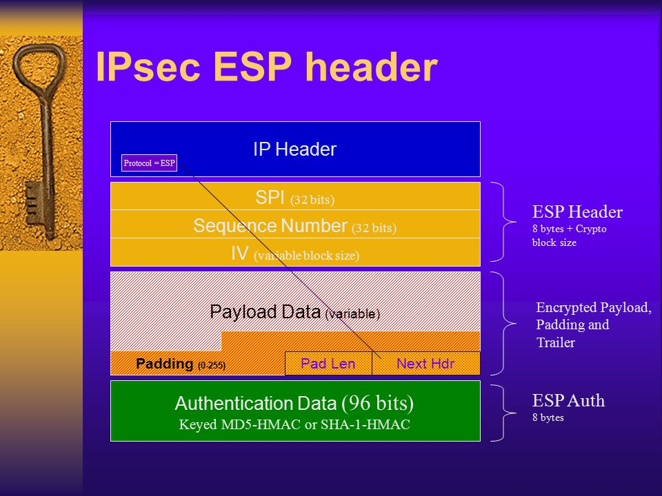 IPsec ESP header Encrypted Payload, Padding and Trailer SPI (32 bits) Sequence Number (32 bits) Payload Data (variable) Next Hdr Pad Len Padding (0-25