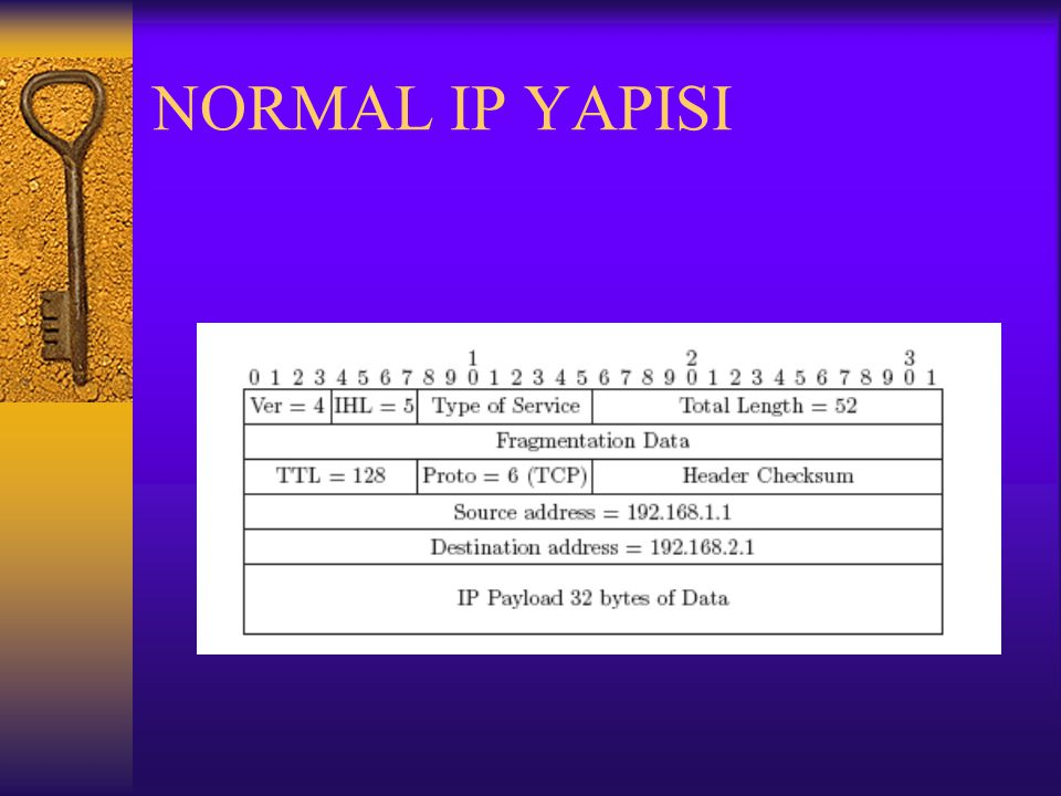 NORMAL IP YAPISI