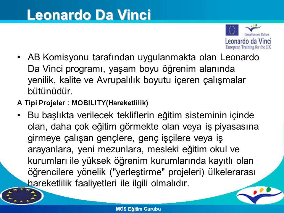 AB Komisyonu tarafından uygulanmakta olan Leonardo Da Vinci programı, yaşam boyu öğrenim alanında yenilik, kalite ve Avrupalılık boyutu içeren çalışma