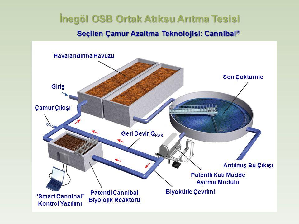 Havalandırma Havuzu Giriş Son Çöktürme Çamur Çıkışı Arıtılmış Su Çıkışı Patentli Katı Madde Ayırma Modülü Biyokütle Çevrimi Patentli Cannibal Biyolojik Reaktörü ''Smart Cannibal'' Kontrol Yazılımı Geri Devir Q RAS Seçilen Çamur Azaltma Teknolojisi: Cannibal ® İnegöl OSB Ortak Atıksu Arıtma Tesisi