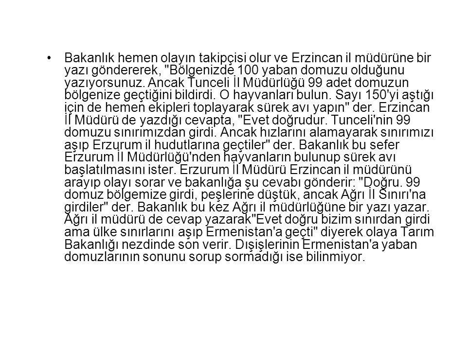 Bakanlık hemen olayın takipçisi olur ve Erzincan il müdürüne bir yazı göndererek, Bölgenizde 100 yaban domuzu olduğunu yazıyorsunuz.