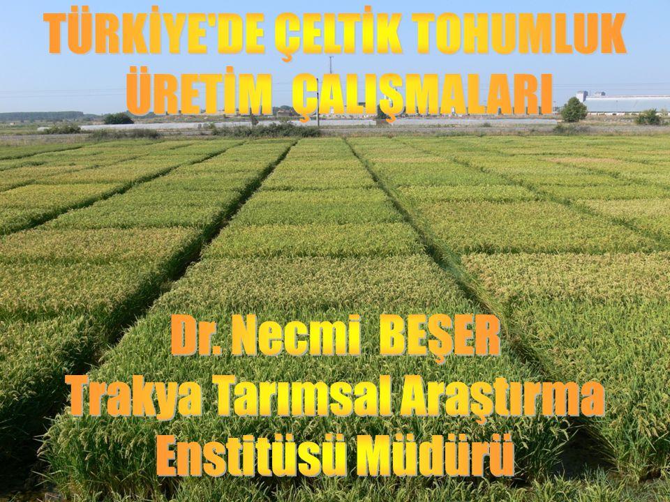 GİRİŞ Türkiye'de çeltik üretimi 1990 yılında 51 bin hektar iken bu tarihten sonra sürekli bir artış göstermiş ve 2009 yılında 100 bin hektar civarında olmuştur.