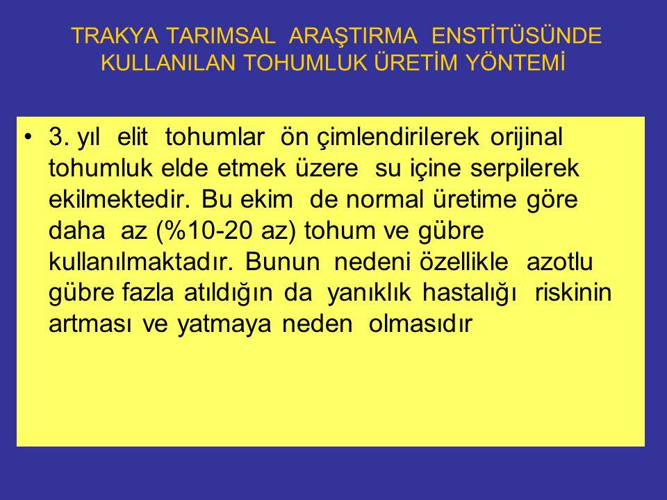 TRAKYA TARIMSAL ARAŞTIRMA ENSTİTÜSÜNDE KULLANILAN TOHUMLUK ÜRETİM YÖNTEMİ 3.