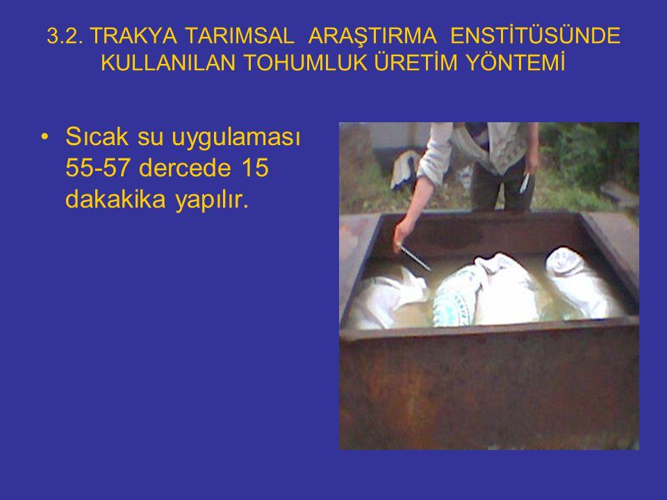 3.2. TRAKYA TARIMSAL ARAŞTIRMA ENSTİTÜSÜNDE KULLANILAN TOHUMLUK ÜRETİM YÖNTEMİ Sıcak su uygulaması 55-57 dercede 15 dakakika yapılır.