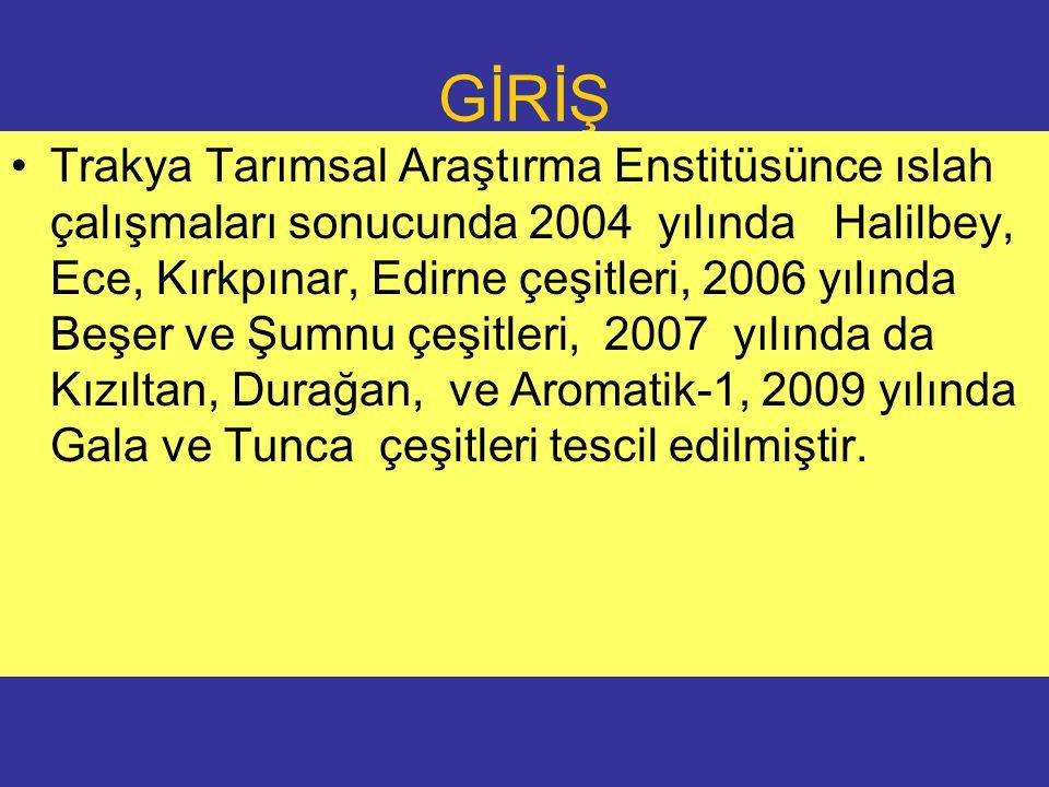 GİRİŞ Trakya Tarımsal Araştırma Enstitüsünce ıslah çalışmaları sonucunda 2004 yılında Halilbey, Ece, Kırkpınar, Edirne çeşitleri, 2006 yılında Beşer ve Şumnu çeşitleri, 2007 yılında da Kızıltan, Durağan, ve Aromatik-1, 2009 yılında Gala ve Tunca çeşitleri tescil edilmiştir.