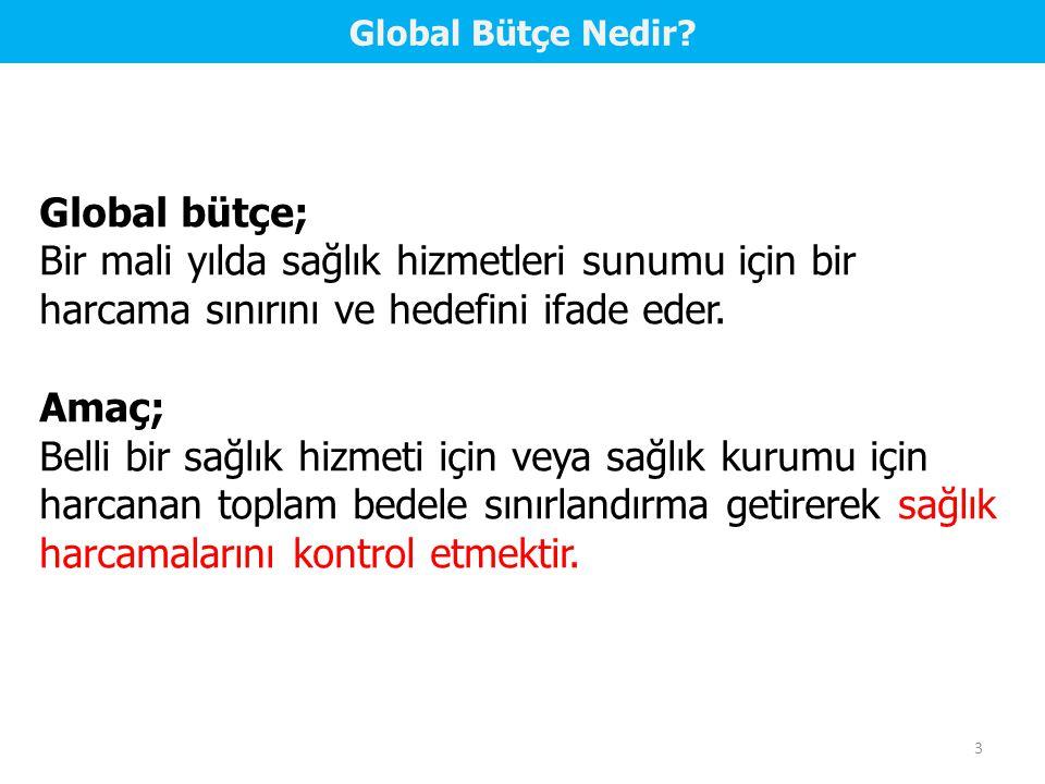 4 Global Bütçe ve Sonuçları 1.