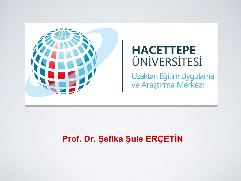 Prof. Dr. Şefika Şule ERÇETİN