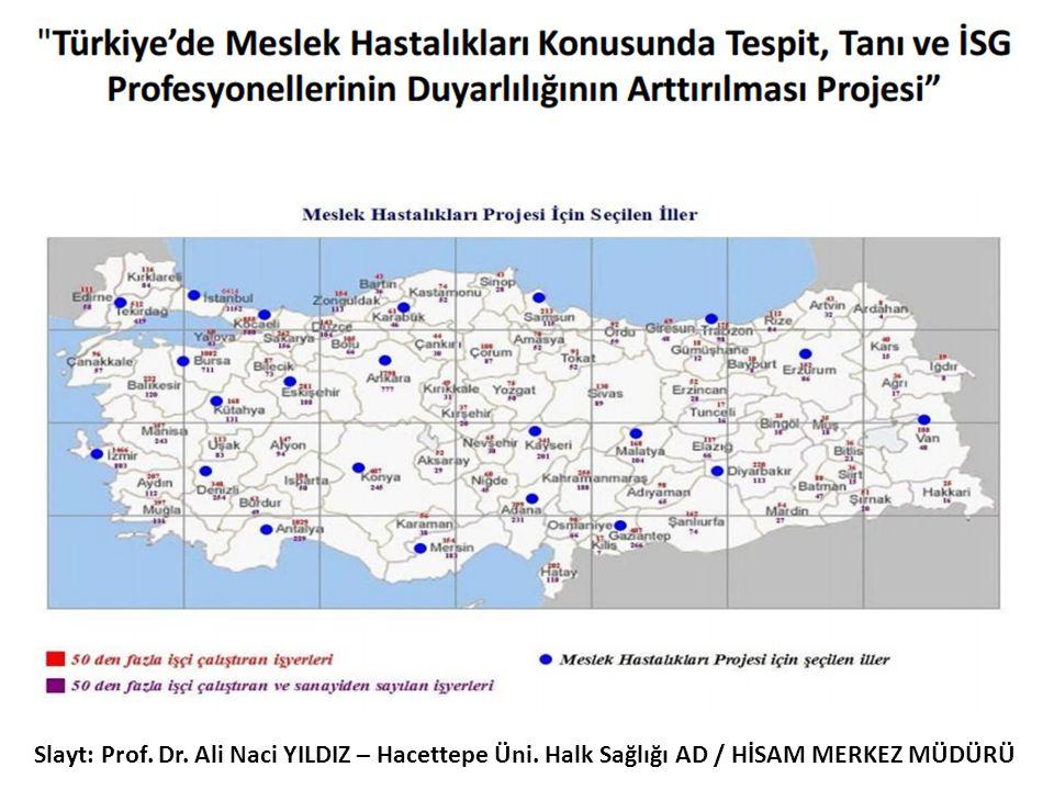 Slayt: Prof. Dr. Ali Naci YILDIZ – Hacettepe Üni. Halk Sağlığı AD / HİSAM MERKEZ MÜDÜRÜ