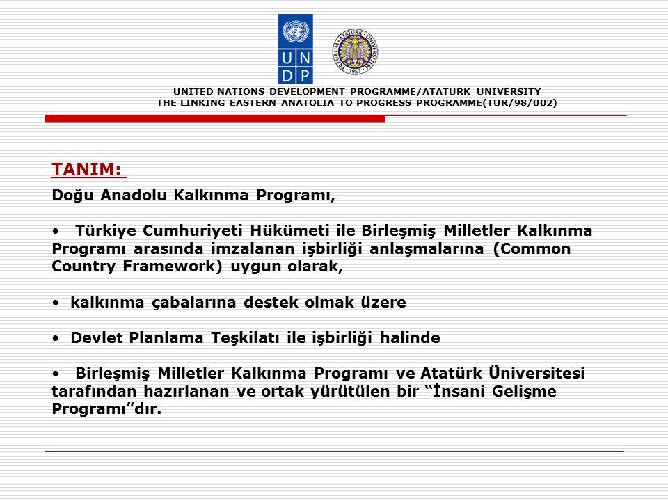 UNITED NATIONS DEVELOPMENT PROGRAMME/ATATURK UNIVERSITY THE LINKING EASTERN ANATOLIA TO PROGRESS PROGRAMME(TUR/98/002) ÇIKARILAN DERSLER 1.Katılımcılığın sağlanmasındaki güçlükler, 2.Kamunun yetki paylaşımına ve işbirliğine yanaşmaması, 3.Daha önce uygulanan politika ve projelerin rant kollama davranışı yaratmış olması, 4.Kamu kuruluşları arasında ortak düşünme ve hareket etme anlayışının olmaması(Kurumsal sermayenin yetersizliği), 5.İnsan sermayesinin erozyona uğramış olması, 6.Sosyal sermayenin gelişmemiş olması, 7.Bireysel, kurumsal ve toplumsal düzeylerde kapasite geliştirmeye olan büyük ihtiyaç