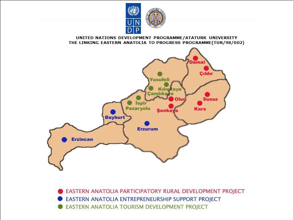 PROGRAM FAALİYETLERİ UNITED NATIONS DEVELOPMENT PROGRAMME/ATATURK UNIVERSITY THE LINKING EASTERN ANATOLIA TO PROGRESS PROGRAMME(TUR/98/002) Katılımcı Kırsal Kalkınma Projesi Girişimciliği Destekleme Projesi Kırsal Turizmi Geliştirme Projesi Diğer Kalkınma İnisiyatifleri